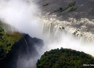imagen Zambia presenta por primera vez…