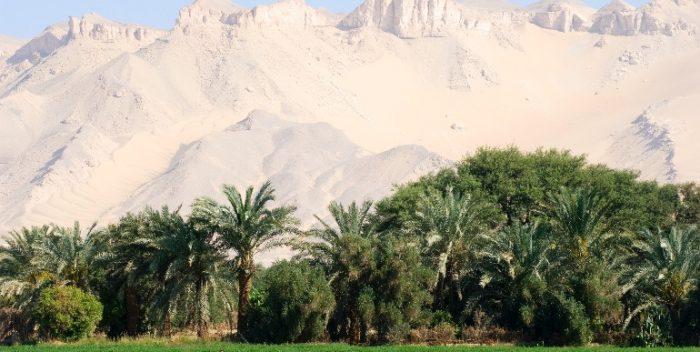 imagen Egipto, destino terapéutico