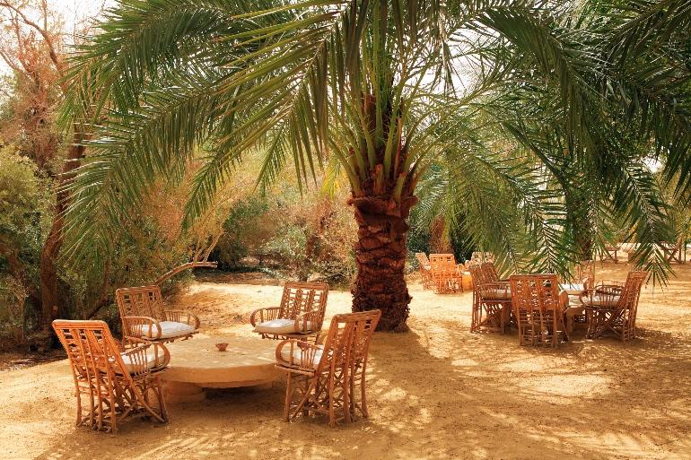 Oasis de Siwa, Egipto