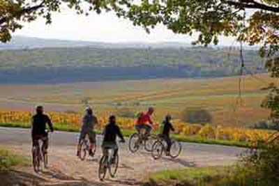 Otoño Entre Los Viñedos Del Loira Tusdestinos Net Turismo Y Viajes