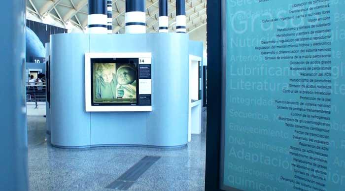 Bosque de Cromosomas en el Museo de las Ciencias Principe Felipe