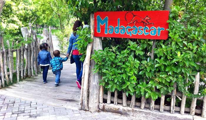 En Bioparc Valencia se reproduce el ecosistema de Madagascar
