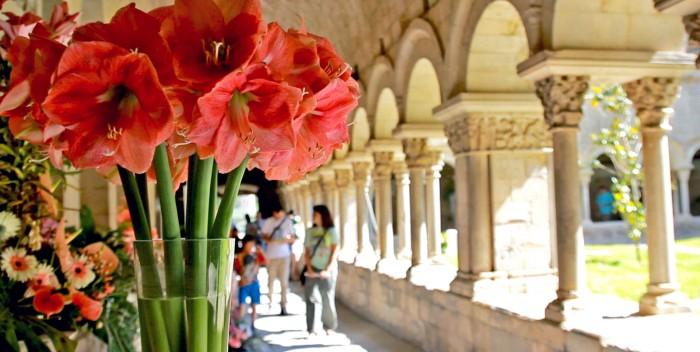 imagen Temps de Flors, Girona