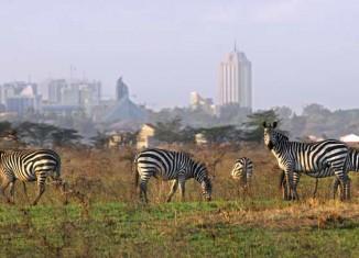Parque Nacional de Nairobi
