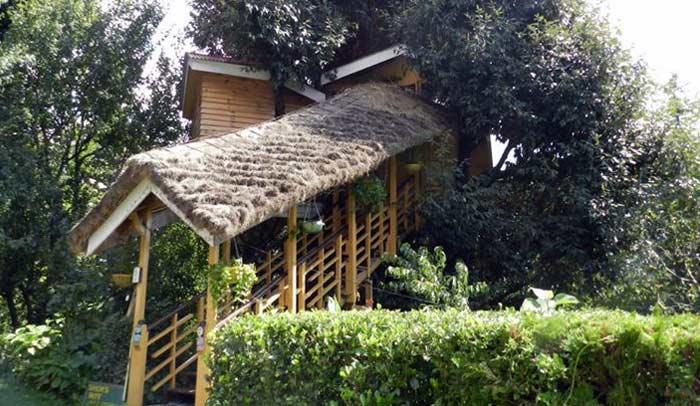 Casa en el árbol en el Himalaya