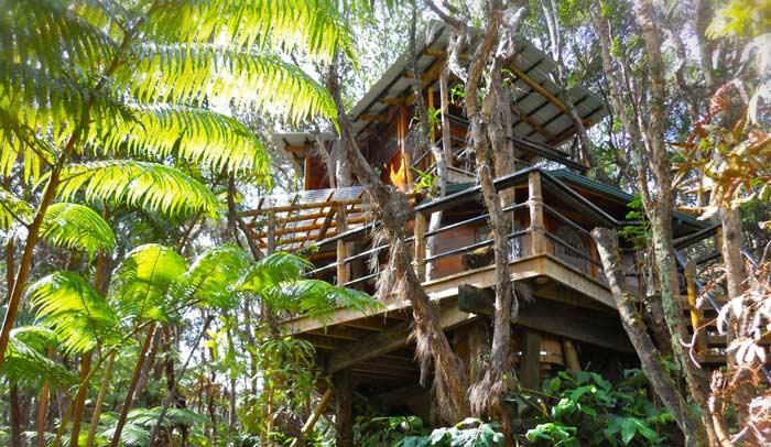 Casa en el árbol en Hawái