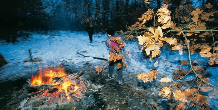 Badnjak ardiendo