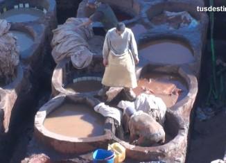 imagen Curtidores de Fez, Marruecos