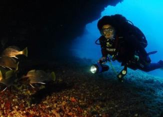 Fondo marino de Formentera. Foto © Pedro de Ureta