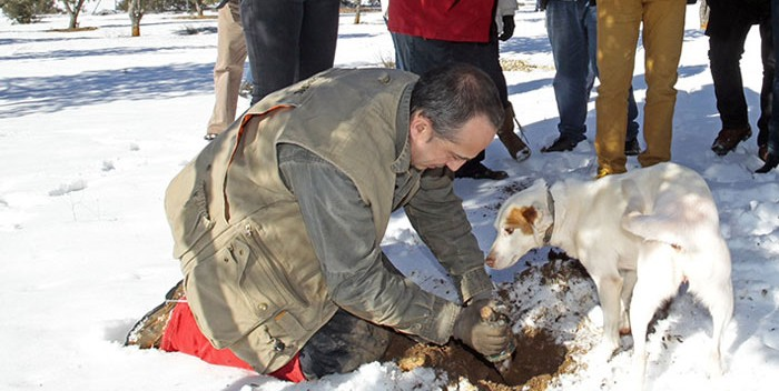 Truficultor con perro trufero