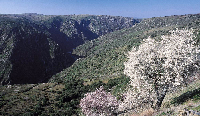 Paisaje parque natural Arribes del Duero © Roberto García