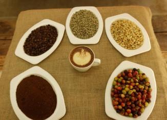 imagen El café, un atractivo turístico…