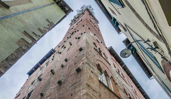 Torre Guinigi de Lucca