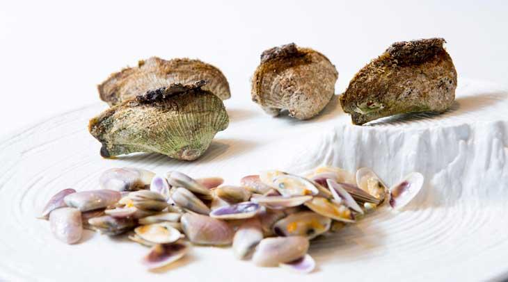 """Tallarinas y """"caixetes"""", moluscos típicos de Terres de l'Ebre y que se pueden tomar en Xerta Restaurant"""