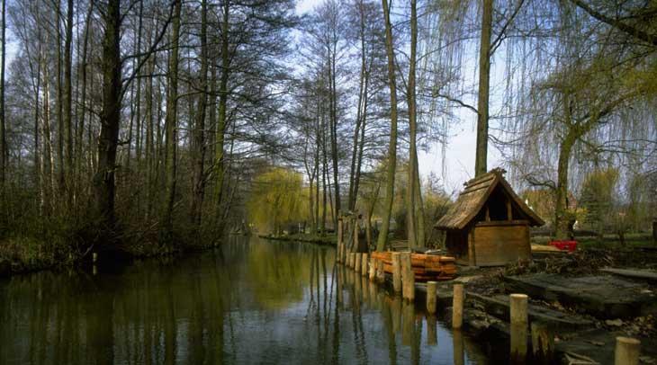 Los pepinillos del bosque de Spree son conocidos en toda Alemania © DZT/Haep, Hiltrud