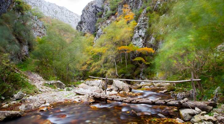 Río Nalón. Foto Noé Baranda. Cedida por Turismo de Asturias