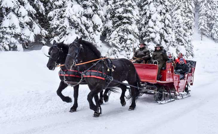 Trineo tirado a caballos en St Anton am Arlberg