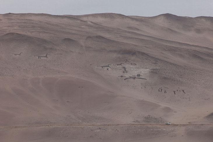 Geoglifos en las laderas de los cerros del valle de Lluta Ronny Belmar