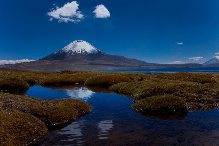 Lago Chungará con el volcán Parinacota de fondo © Ronny Belmar