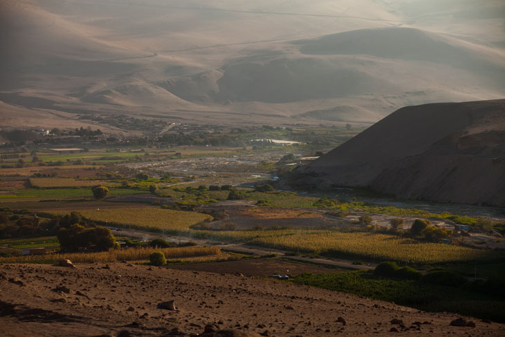 Valle de Lluta © Ronny Belmar