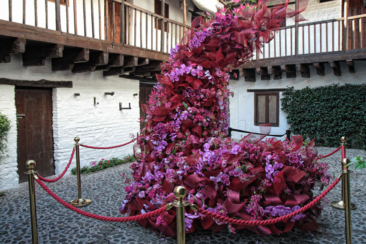 Festival Internacional de las Flores, Flora