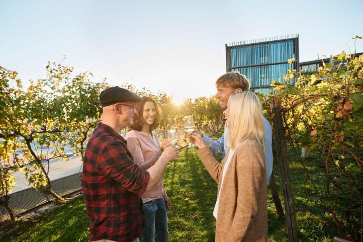 País del vino alemán, bodega Weingut am Stein. Foto: GNTB/photographer: Jens Wegener