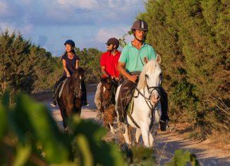 Paseos a caballo por Formentera. Foto Alfredo Montero