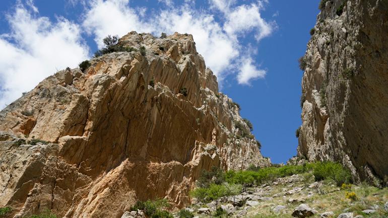 Naturaleza agreste a lo largo del sendero GR-262 en la comarca de Cuencas Mineras