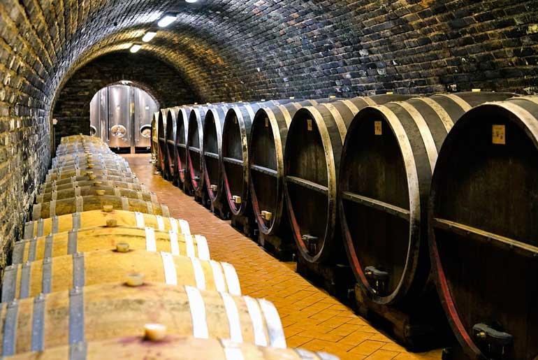 El 97% del vino de la República Checa se produce en Moravia del Sur