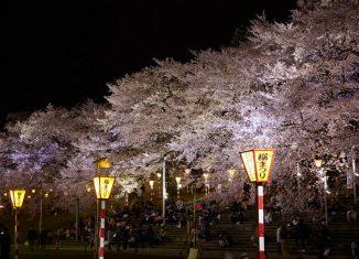imagen Seis lugares de Japón para…
