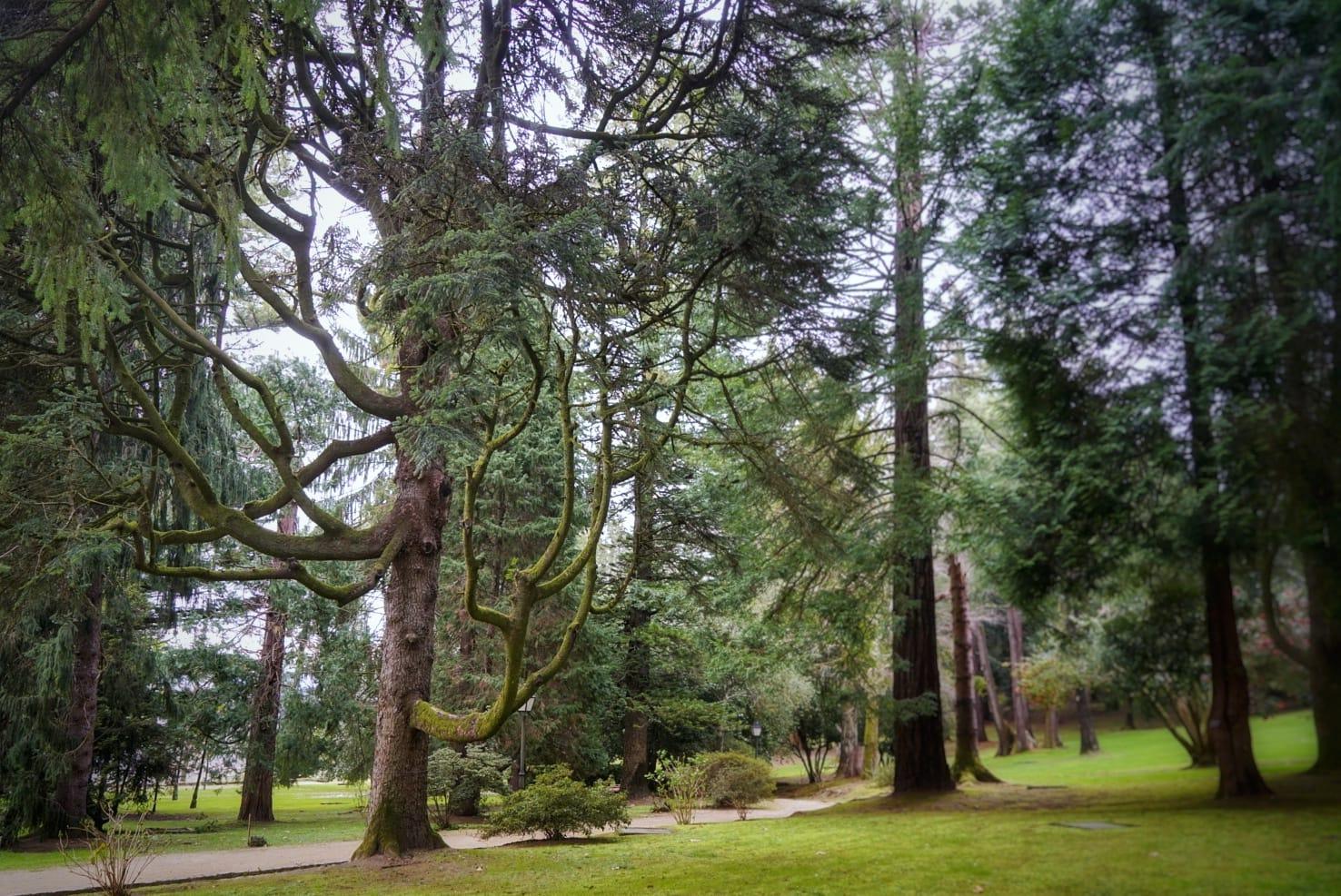 Los jardines del Castillo de Soutomaior son unos de los mejores conservados de las Rías Baixas