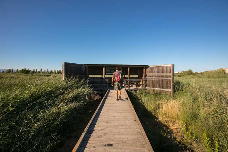 La Séquia Major es una zona húmeda litoral protegida por el Plan de Espacios de Interés Natural (PEIN) de la Generalitat de Catalunya desde el año 1992