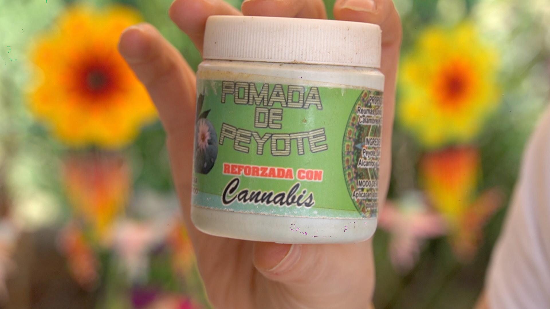 Pomada de peyote y cannabis elaborada por los huicholes