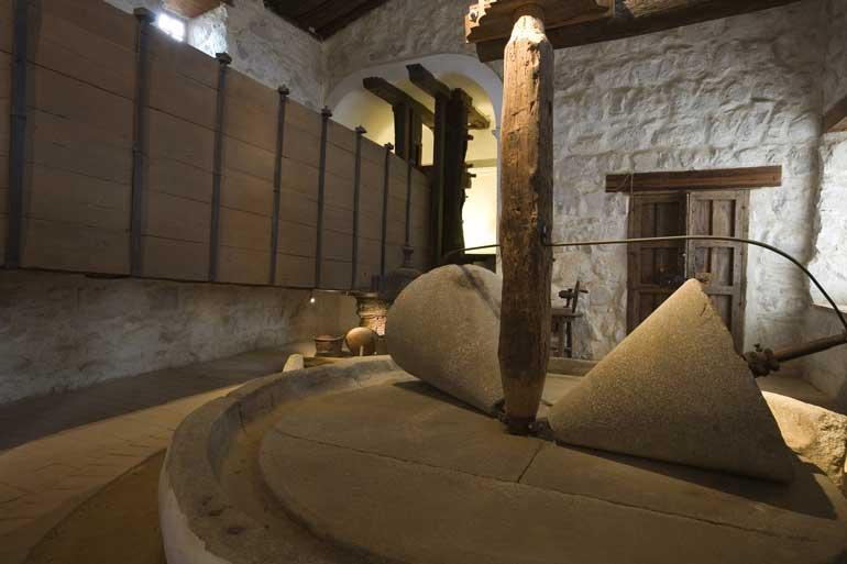Museo Cultura del Olivo