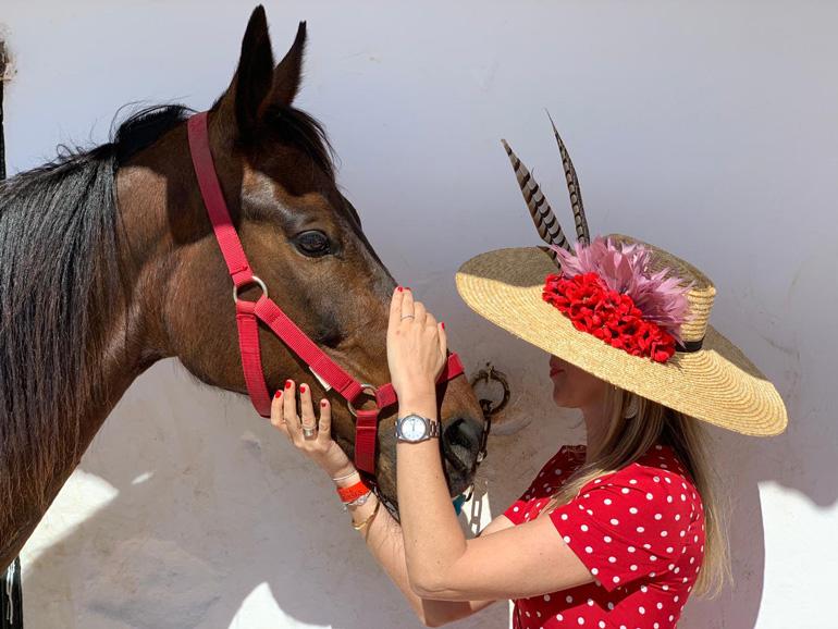 Hat & Horses
