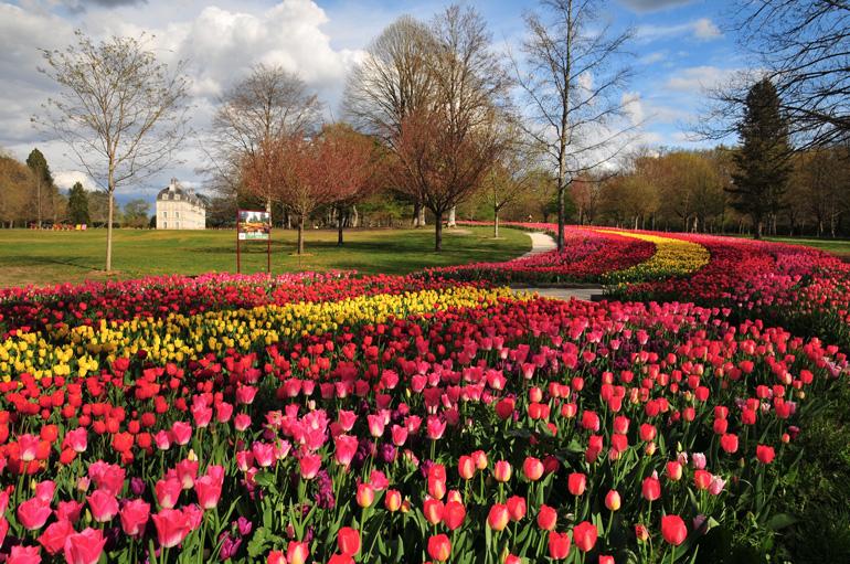 Jardines del Castillo de Cheverny @DNG