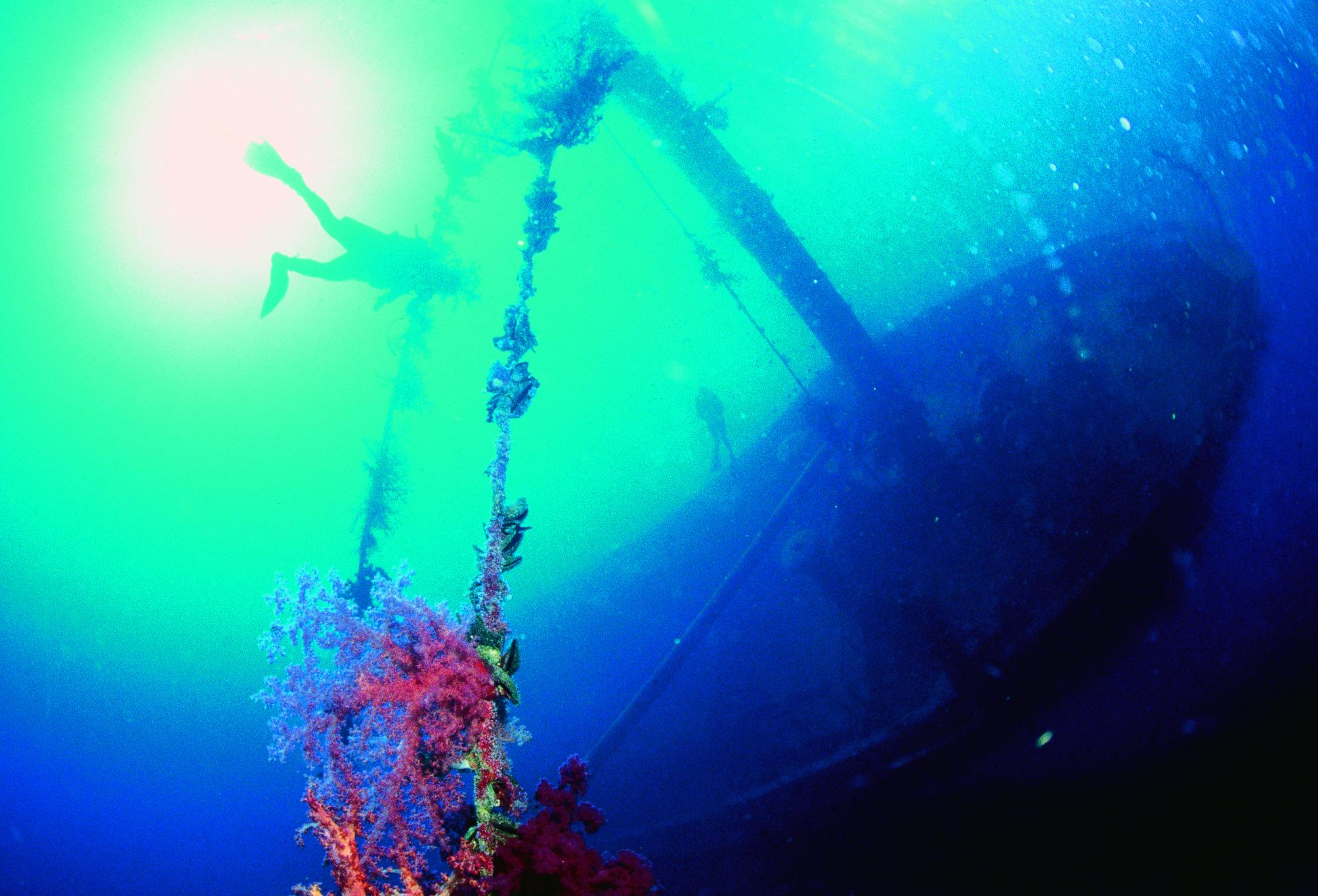 Submarinismo en Aqaba
