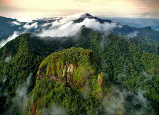 imagen Parques Nacionales de Panamá: un…