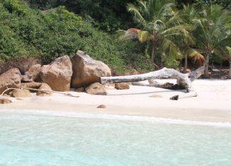 imagen Pedasí (Panamá), refugio del turismo…