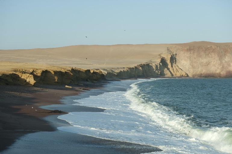 Reserva Nacional de Paracas © Jeanine Costa