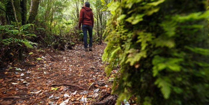 Parque Nacional Chiloé
