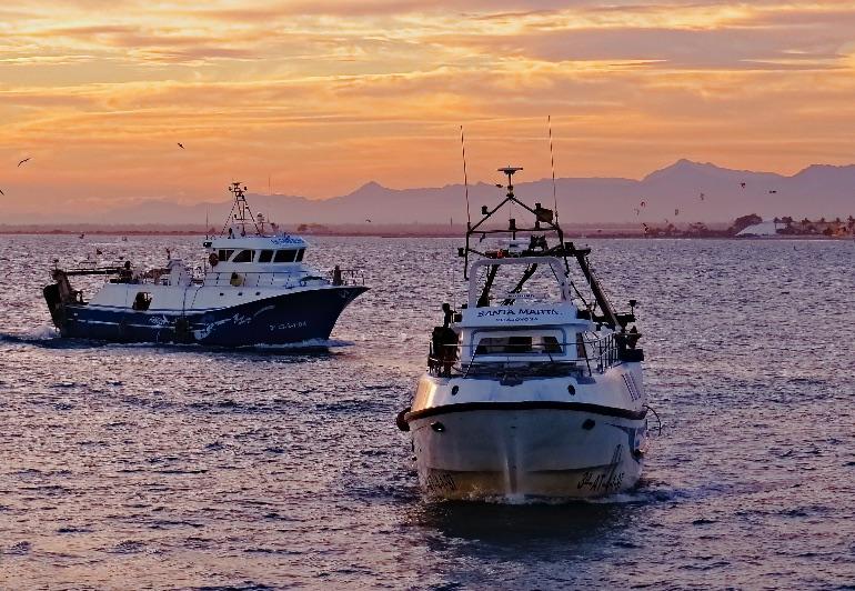 Puerto pesquero de Santa Pola