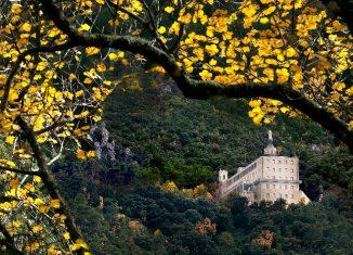 imagen Naturaleza y modernismo en Alcoy/Alcoi