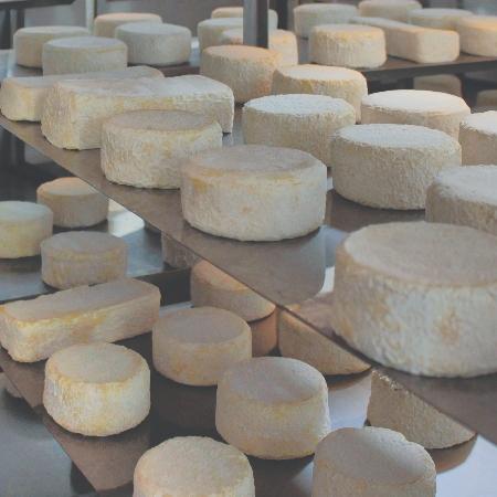 El queso es uno de los productos abanderados de la gastronomía del Alt Urgell