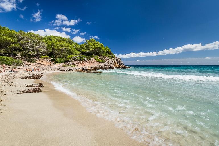 A los surfers les encanta Cala Nova Beach