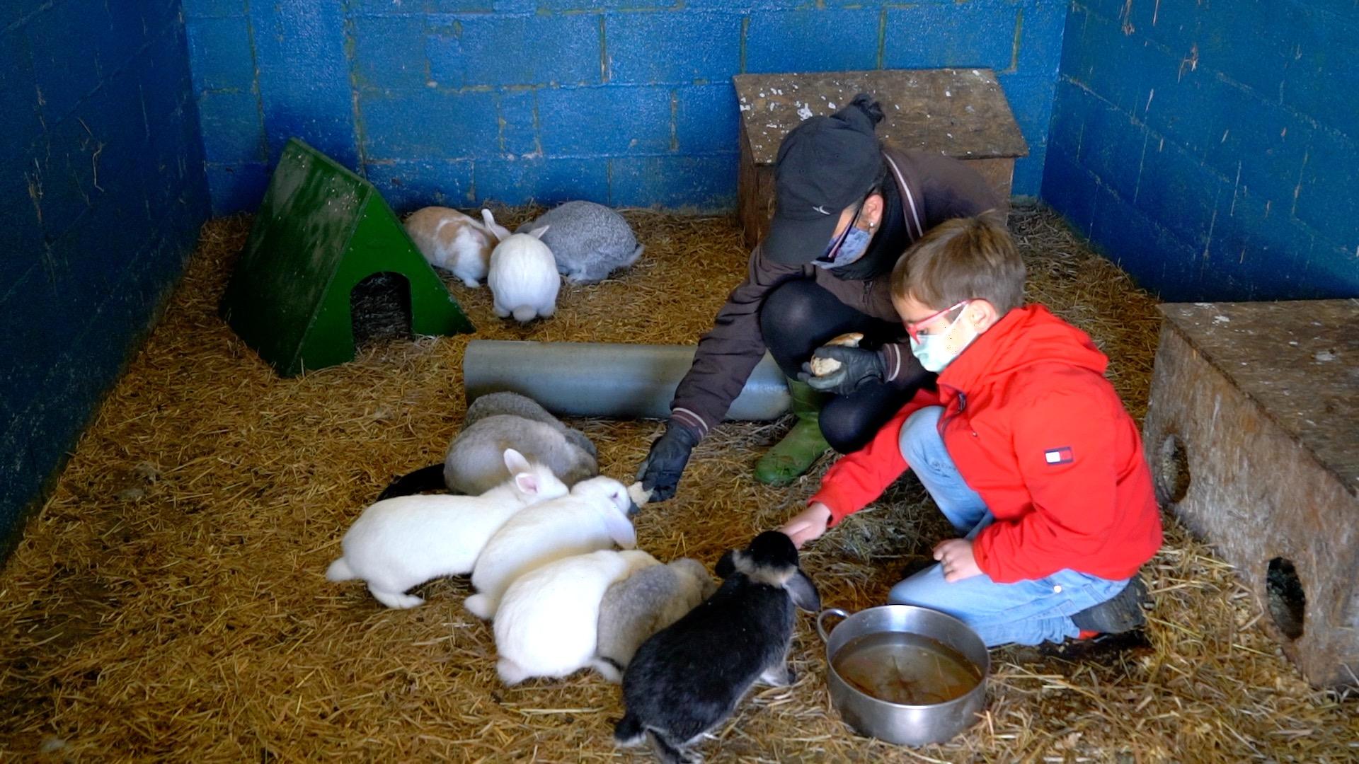En Granxa do Souto los niños se lo pasan en grande también con los animales de granja.