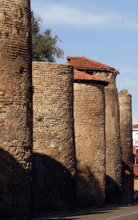 Muralla de cubos de León