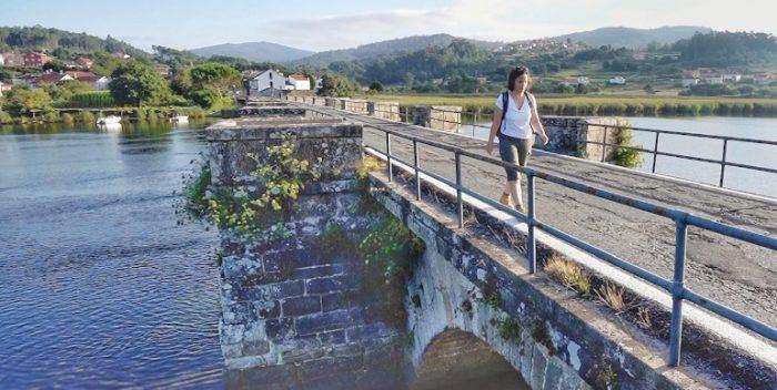 imagen El Camino de Santiago de…