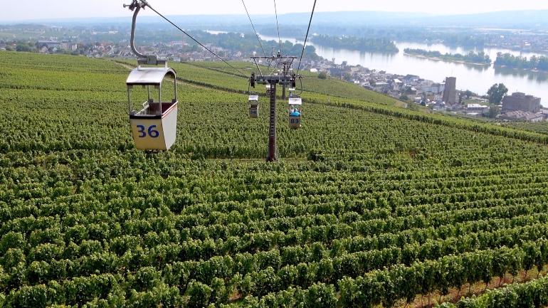 Teleférico hasta el monumento de Niederwald y viñedos en la ladera de la montaña